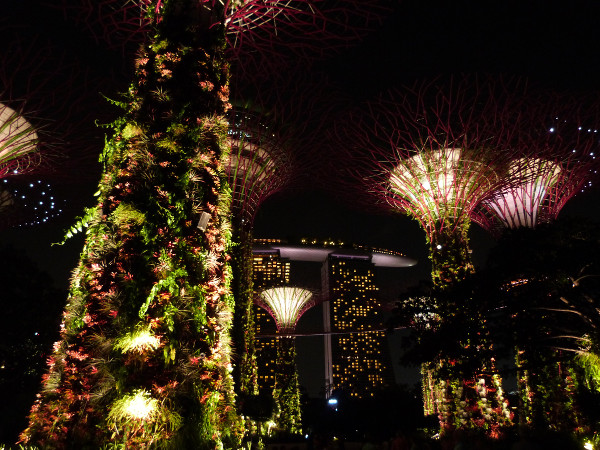 Gardens by the Bay Singapour - blog Bar a%CC%80 Voyages