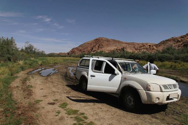 Sur la piste des éléphants du désert - blog Bar à Voyages