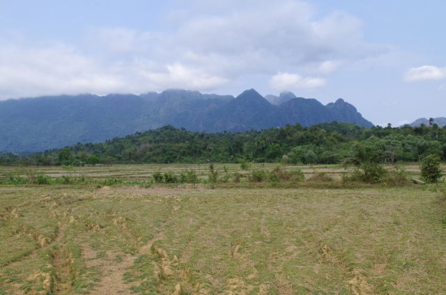 Riziere Laos