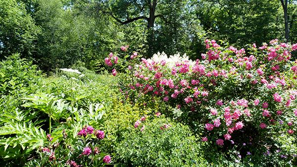 Le Domaine Joly de Lotbinière ravira les amateurs d'horticulture - Québec