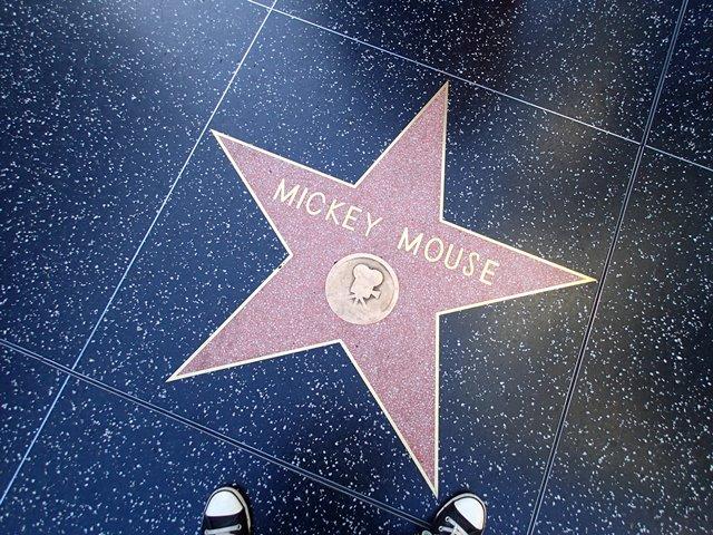 Hollywood Bouvelard