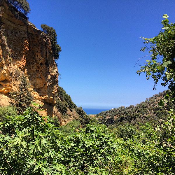 Vue sur la mer et la végétation luxuriante de la gorge de Myli