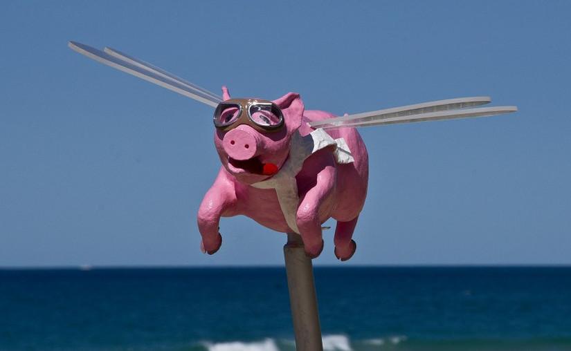 cochons ailés - blog Bar a Voyages