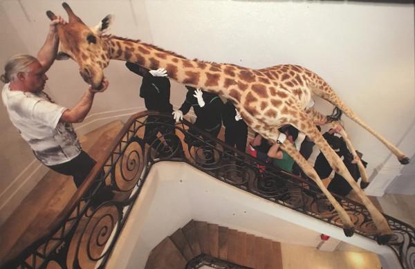 photo du cliché montrant le transport de la girafe