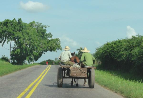 paysans et charrette sur la route à Cuba