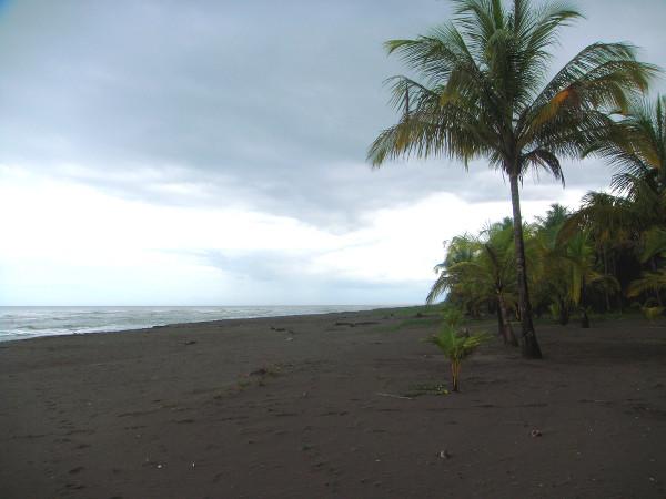 Plage de sable noir dans la région de Tortuguero