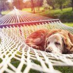 8 סודות איך להתמודד עם לחץ בעבודה עומס מטלות והעומס הרגשי הנלווה לכך – חלק ב'