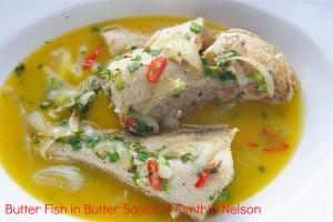 tastebutterfish