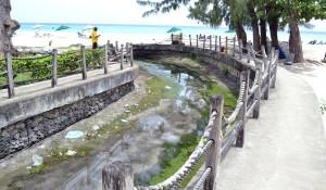 accravendorsmosquitohaven