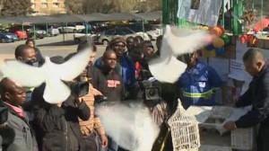 Releasing doves for Mandela