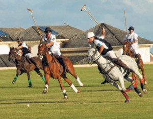 Polo action is on this Sunday at Holder's Hill.