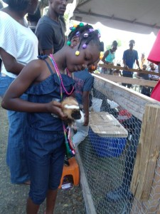 This young lady wanted to know more about hamsters.