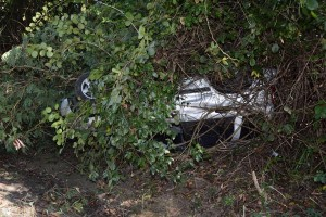 Car overturned in bushes.
