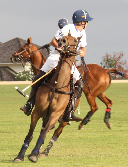Polo action moves to Lion Castle this Sunday.