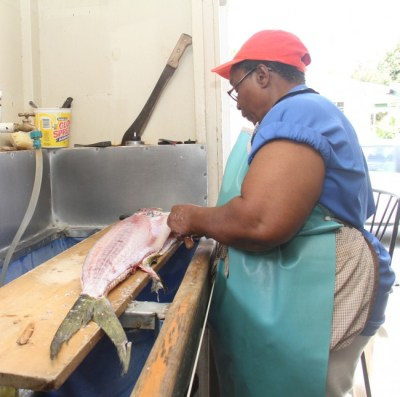 A concerned Lucina Skeete busy skinning a dolphin.