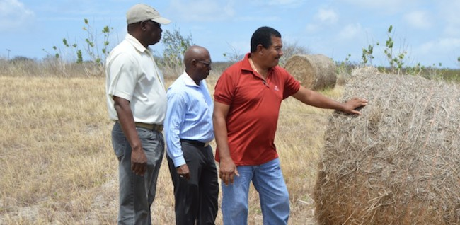 BAS CEO James Paul (left) and other executive members during today's tour.