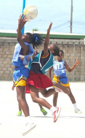 Latavia Hazell-Codrington of Hindsbury Primary beat Crystal Tudor of Westbury Primary on the jump to catch the ball.