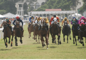 Exciting racing anticipated at the Garrison Savannah tomorrow with the St Ann's Garrison Handicap the feature event.