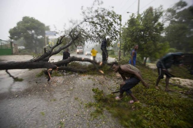 People work to remove an uprooted tree from a road in Leogane, Haiti, after Hurricane Matthew hit on Tuesday. (AP Photo/Dieu Nalio Chery)