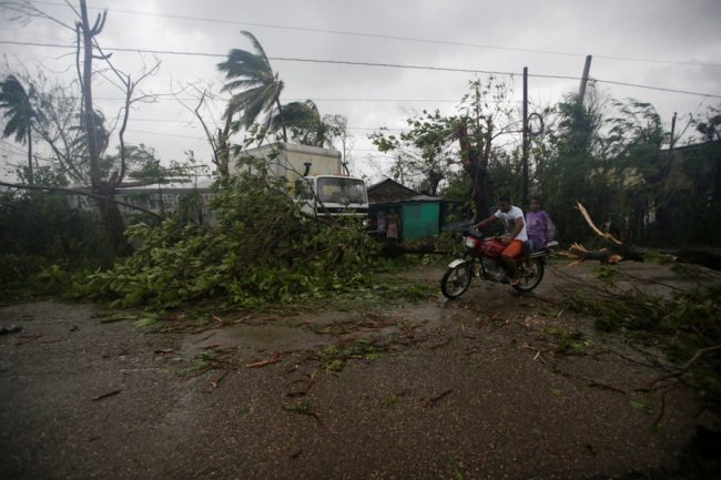 Fallen trees are seen after Hurricane Matthew passed through Les Cayes, Haiti.  (Andres Martinez Casares/Reuters)