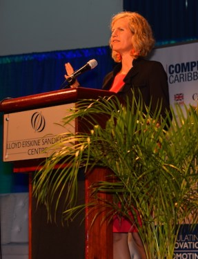 Private sector lead specialist at the IDB division of competitiveness, technology and innovation Sylvia Dohnert.