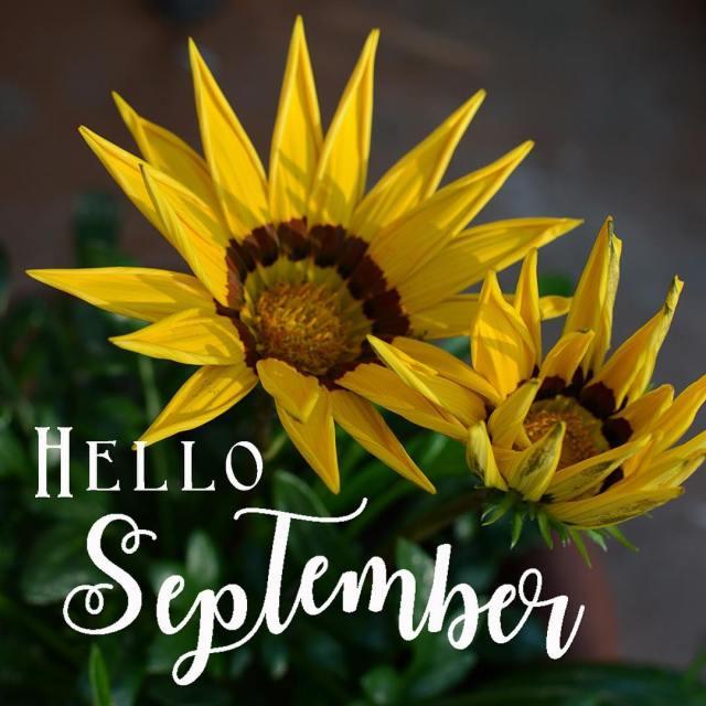 Do you flip the calendar page with a sense ofhellip