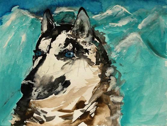 Husky 1, 2011, 24x32cm, Aquarell auf Papier