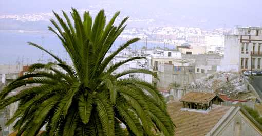 Blick von der Zimmerterrasse des El Minzah
