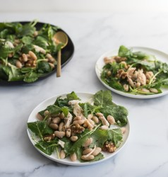 Chicken Kale and White Bean Salad, Copyright Toby Amidor