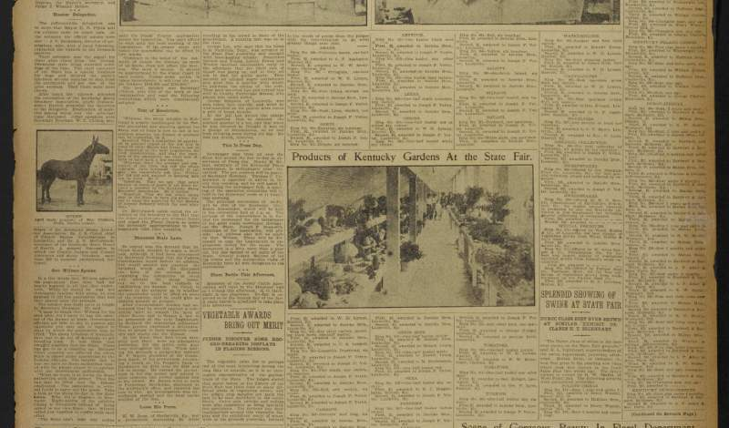 Heritage Newspapers – Online and Digitized