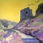 438w aberfelin in yellow purple