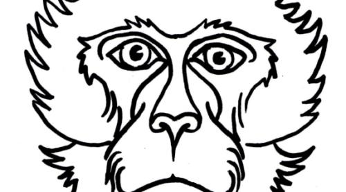 New Barbary macaque masks