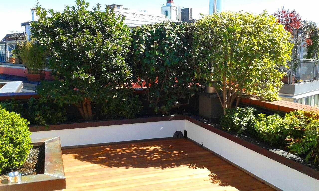 Realizzazione Manutenzione Giardini e TerrazziGiardiniere