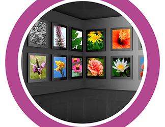 Digital Fine Art Printing