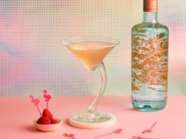 Silent Pool Gin Flamingo Cocktail Recipe