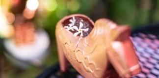Absolut Elyx Jasmine cocktail recipe