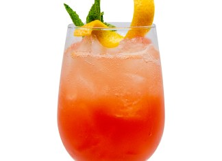 Monin Autumn Blood Orange Bitter cocktail recipe