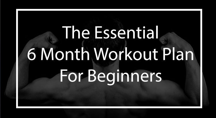 the essential 6 month