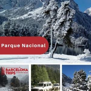 Natural Park, 7 Dec. 2020