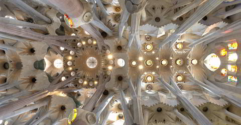 looking up in the vault of the nave