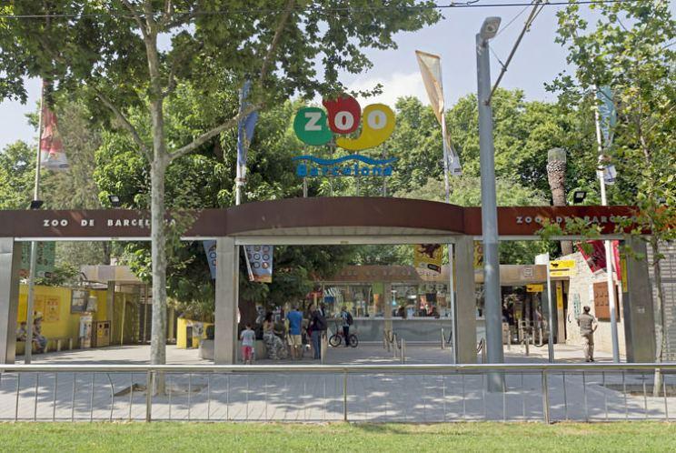 barcelona-zoo
