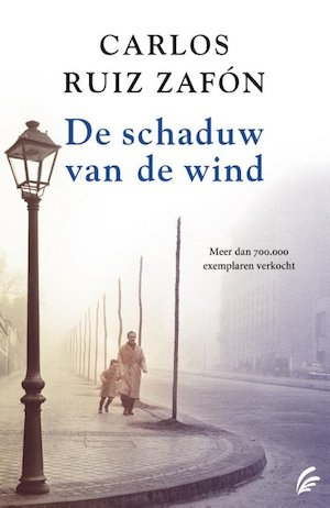 boek schaduw van de wind
