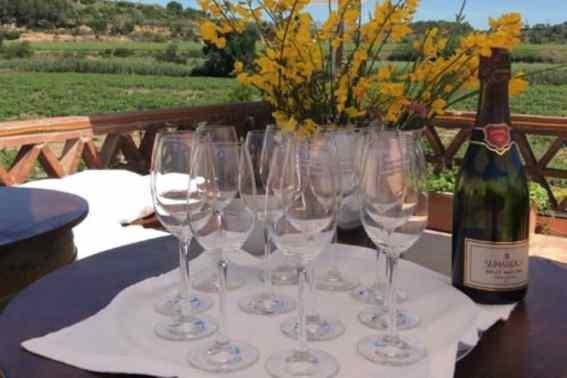 lege wijnglazen met fles wijn
