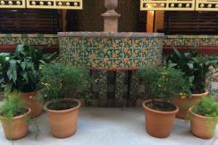 Casa Vicens planten