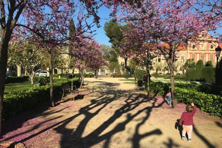 bomen in Parc de la Ciutadella