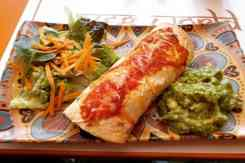 Gerecht met burrito veg world India