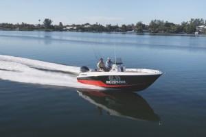 Wellcraft 222 barche a motore 6