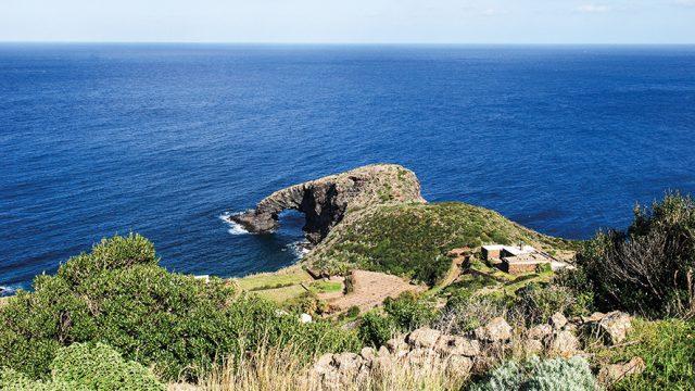 TUA RITA Pantelleria per Tua Rita