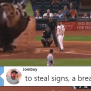 This Fan Video Perfectly Explains The Astros Cheating