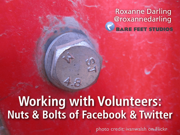 Nuts & Bolts of Working with Volunteers, photo by ivanwalsh on Flickr